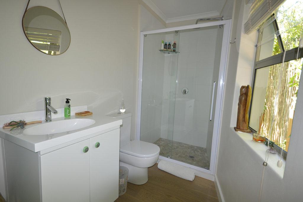 Guest En Suite Bathroom: House Renovations