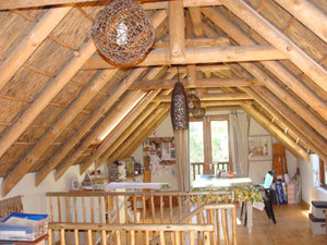 Thatch Roof Feature