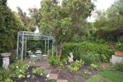 Rose Garden and Gazebo