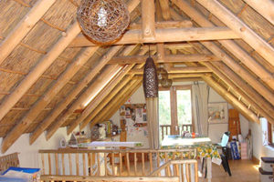 Thatch Roof Feature - Thatch roof designs